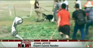 democracy_now_jonni_joyce_dog_attack_native_american_pipeline_protestors